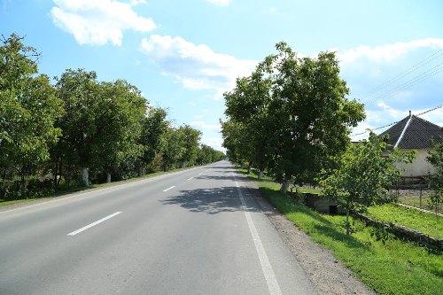 avtodoroga-m-24-mukachevo-beregovo-luzhanka